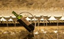 Weinverkostung mit dem Österreichischen Sommelier Club