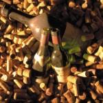 Schätze aus dem bestens ausgestatteten Weinkeller im Goldenen Berg