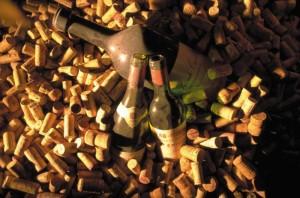Ausgezeichnete Weine im Hotel Goldener Berg genießen